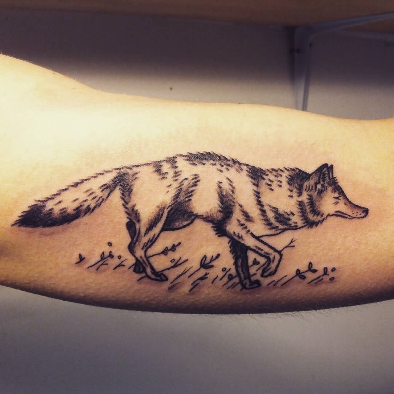 39797f0c8 37+ Incredible Coyote Tattoos