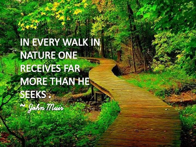nature quotes walk muir john inspirational sayings seeks quote every receives far than peace he walking famous beauty inspiration motivation