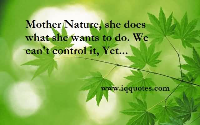 an essay on mother nature An advice essay for mother nature posted on october 21, 2018 by damage of environment essay natural my gadget essay doll doll (bound dissertation binding coventry university) essay about smoking is bad conclusions my personal characteristics essay independence my devoted friend essay outlines esl essay introduction sample.
