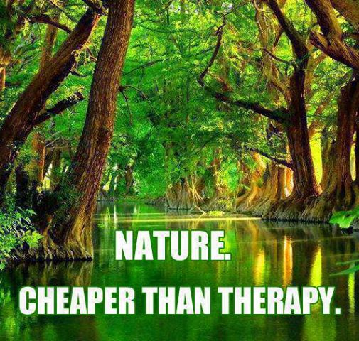 Shakespeare Quotes About Natures Beauty: 71+ Famous Nature Quotes & Sayings