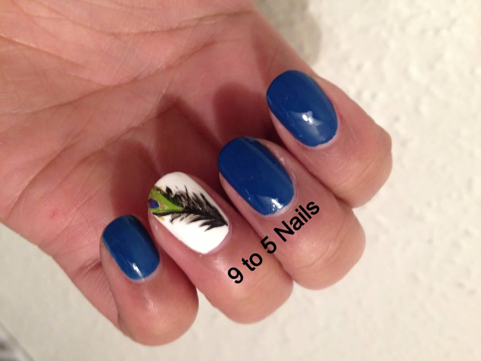 Navy Blue Nails With Accent Feather Nail Art