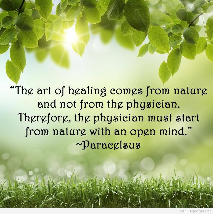 Quotes Nature 71 Famous Nature Quotes & Sayings