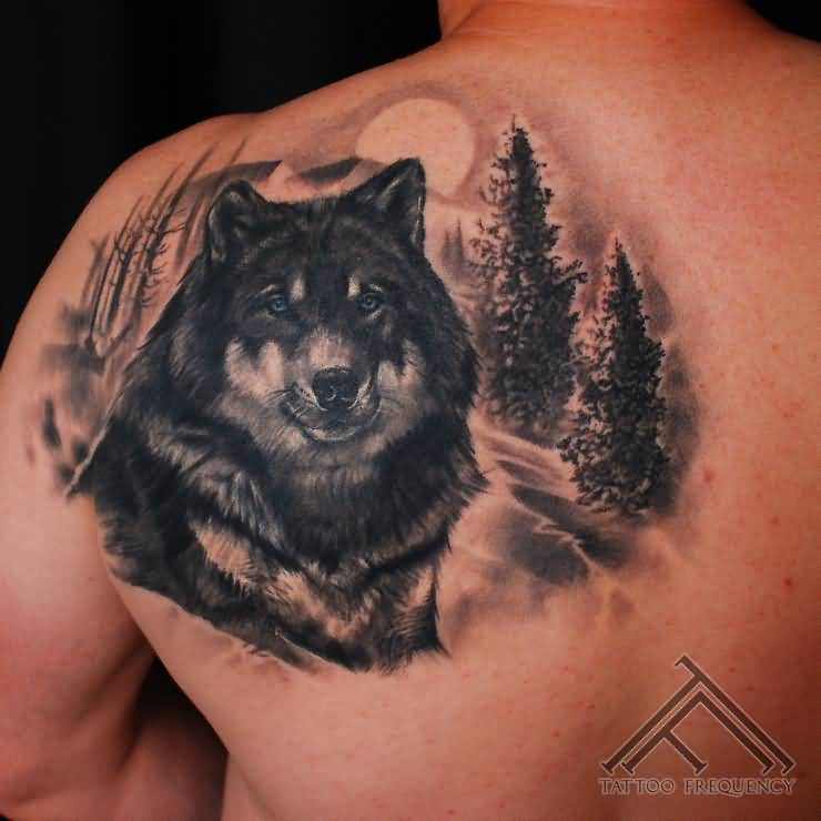 Wolf head and forest tree tattoo on back shoulder for Wolf head tattoos