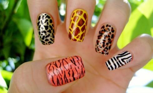 Nail Art Design Zebra Absolute Cycle