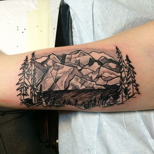 d3f761bbc Spectacular Mountains With Pine Trees Tattoo On Half Sleeve