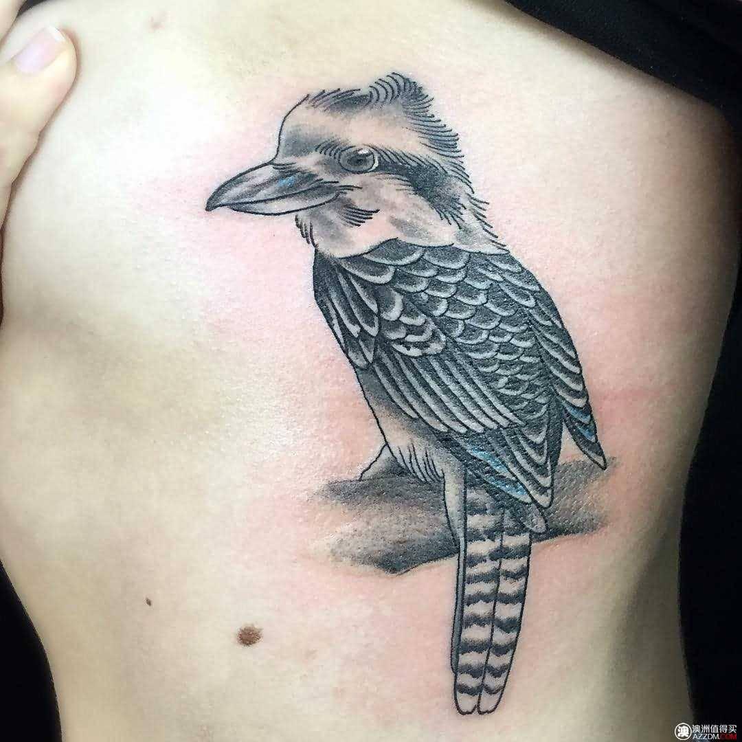 15 best kookaburra tattoos. Black Bedroom Furniture Sets. Home Design Ideas