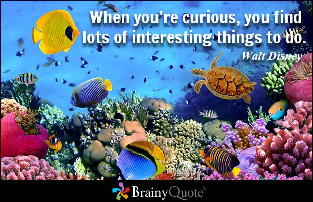 When you're curious, you find lots of interesting things to do.