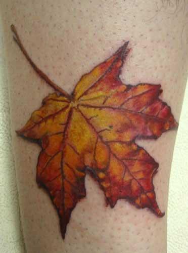 Amazing Colored Maple Fall Leaf Tattoo