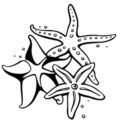Gallery For gt Tribal Starfish Tattoo Designs