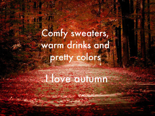 Attrayant Comfy Sweaters, Warm Drinks And Pretty Colors. I Love Autumn Happy Autumn  Wishes Picture