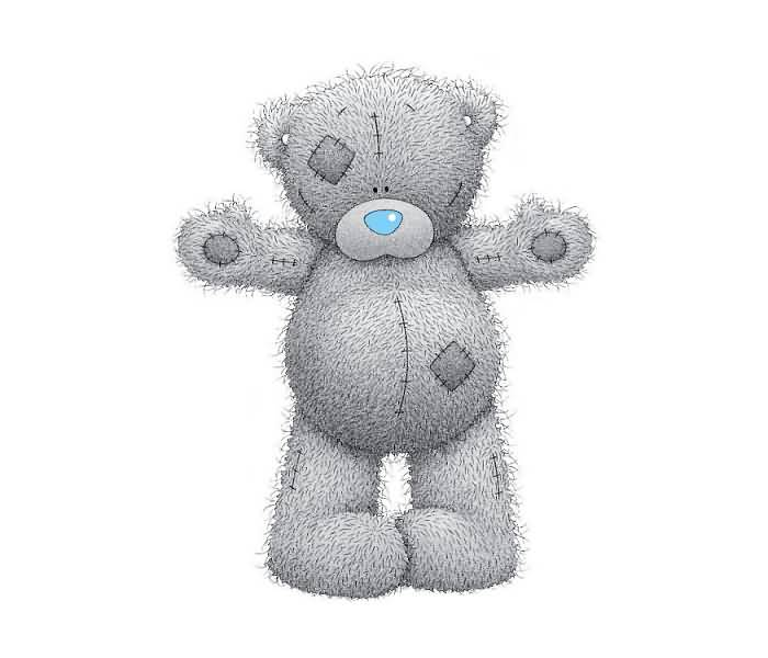 cute tatty teddy picture