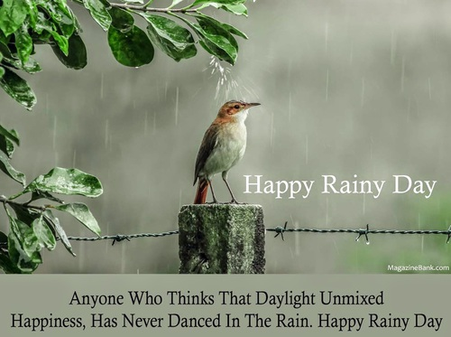 55 Best Rainy Day Wish Pictures And Photos