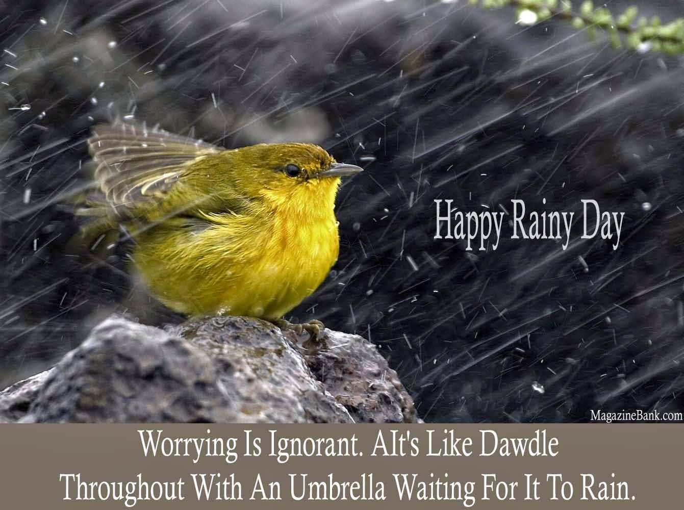 Happy Rainy Day Worrying Is Ignorant. A It's like Dawdle Throughout With An Umbrella Waiting