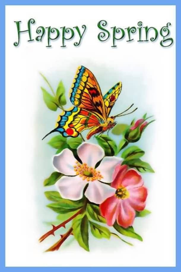 41 latest spring season wish pictures and images happy spring butterfly on flowers picture m4hsunfo