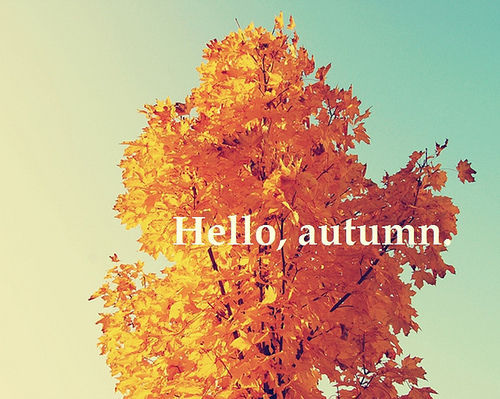 Hello Autumn Wishes Tree Picture