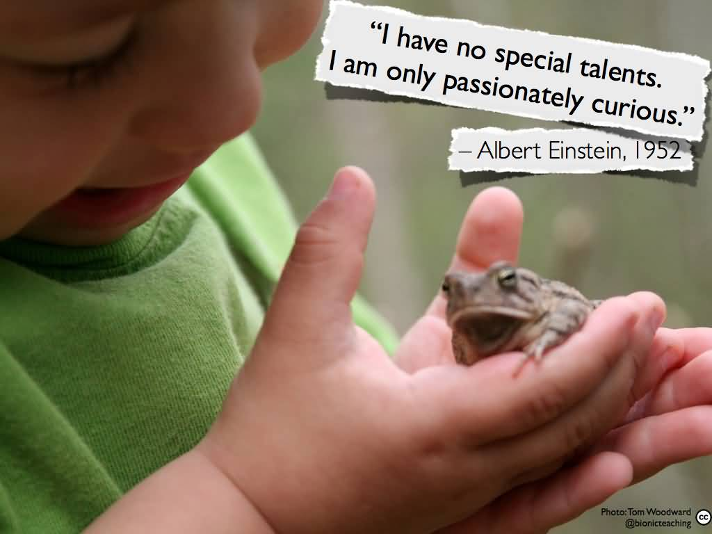 Image result for Passionately curious