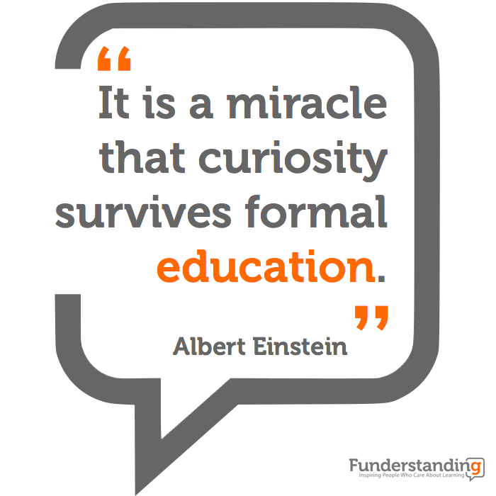 It's a miracle that curiosity survives formal education.