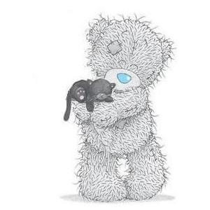 cute love teddy bear couple