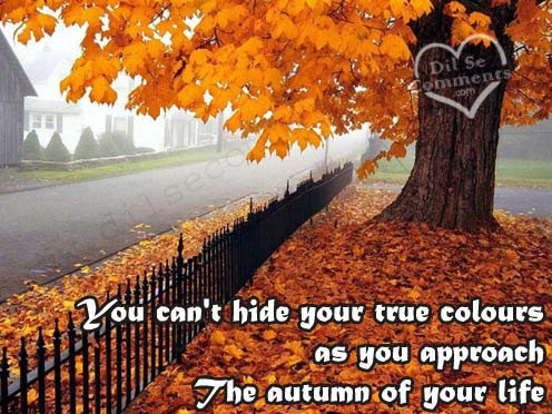 You Can't Hide Your True Colors As You Approach The Autumn Of Your Life