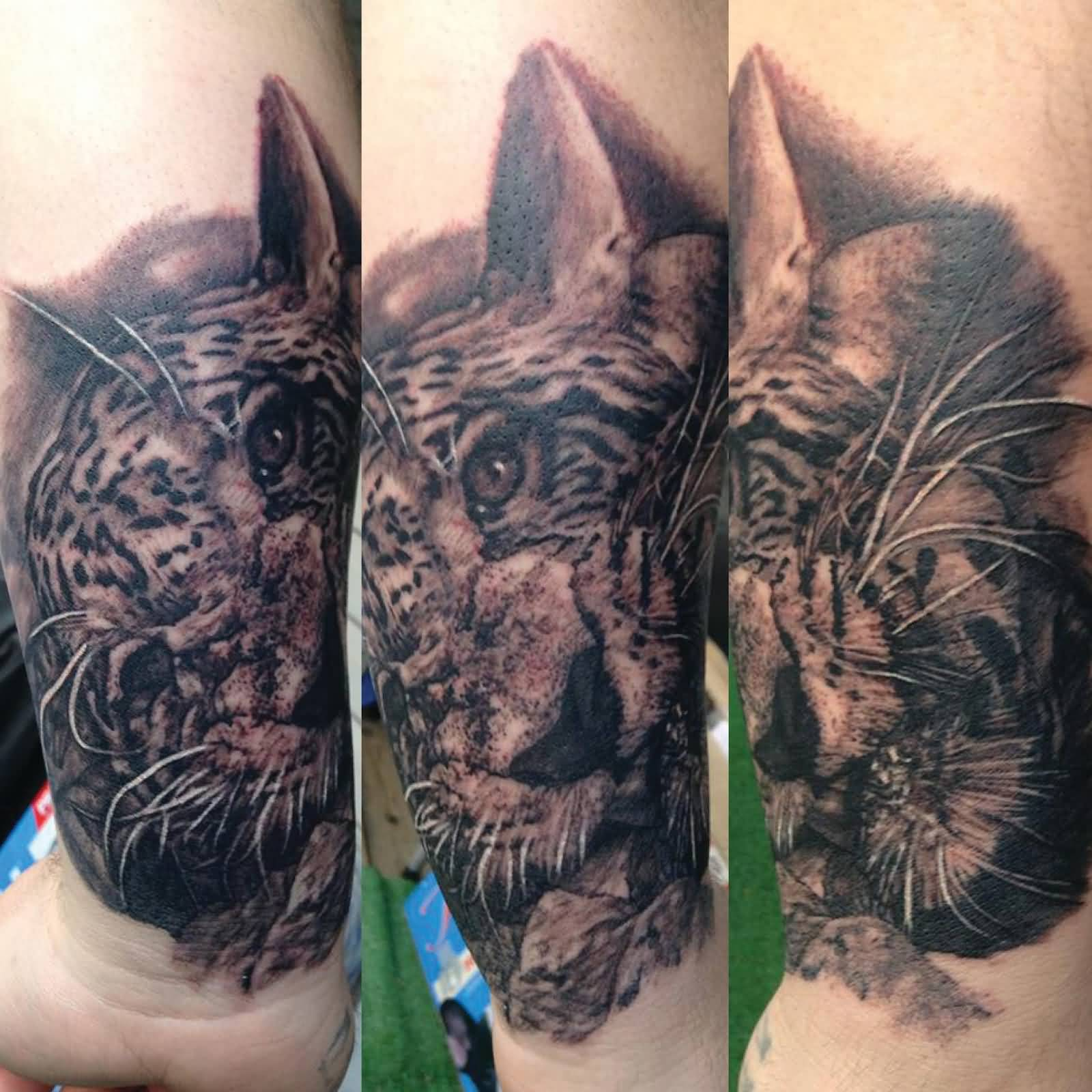 50 Wonderful Jaguar Tattoos