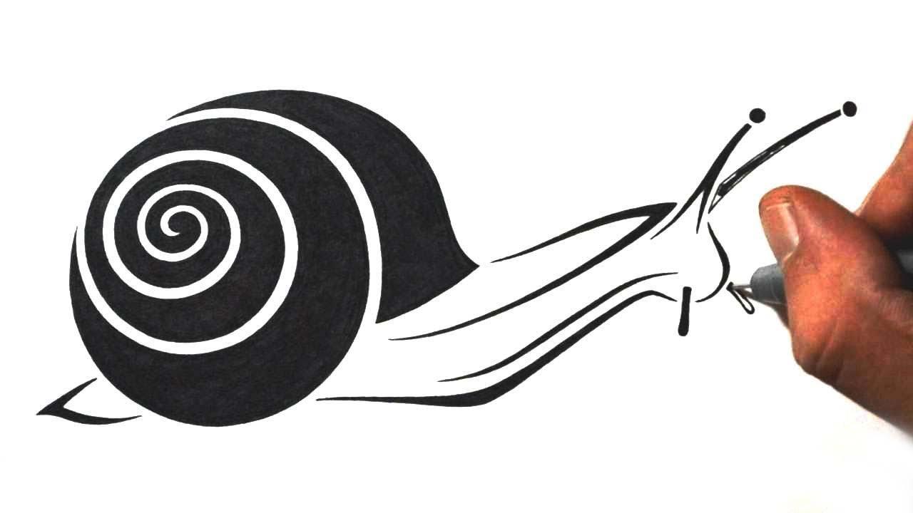 34 Latest Snail Tattoo Designs