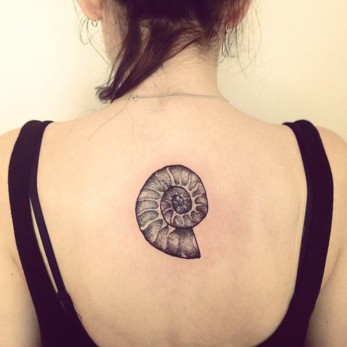 Spiral Seashell Tattoo | www.pixshark.com - Images ...