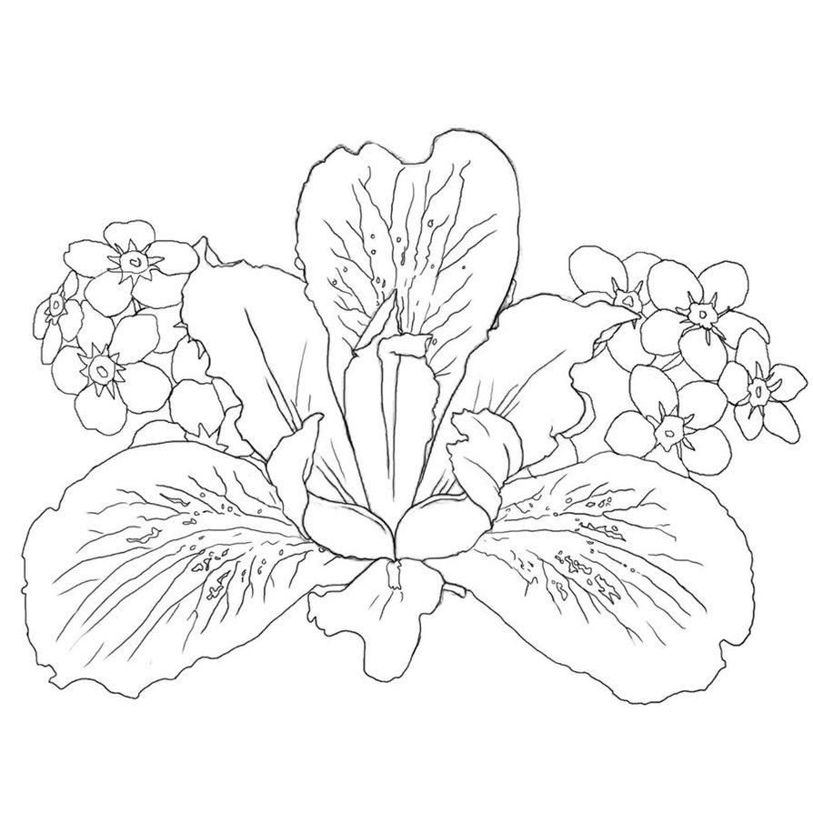 20 black and white iris tattoo designs attractive iris flower with other flowers black and white tattoo design izmirmasajfo