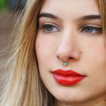 24 Beautiful Septum Piercing Pictures