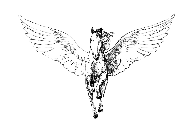 40 Famous Pegasus Tattoo Designs additionally Sad Quotes White Background moreover File Wolf roar transparent background by treebuzza D6wptvi furthermore 400116748116840756 also How To Draw A Realistic Eagle  Golden Eagle. on dark to light feathers
