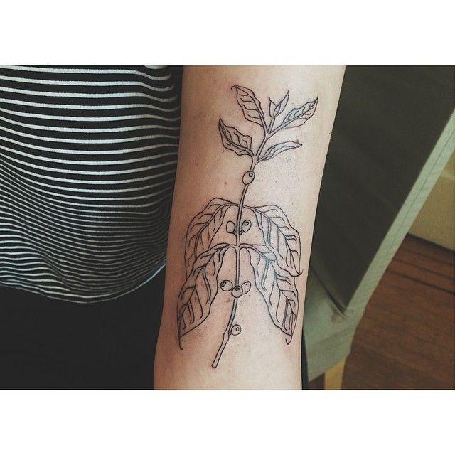 nice coffee plant tattoo on arm by olivia harrison. Black Bedroom Furniture Sets. Home Design Ideas