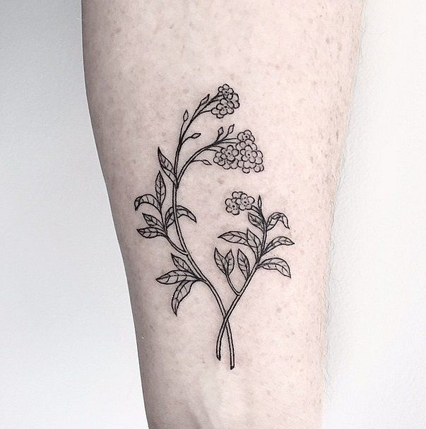 20 simple plant tattoos. Black Bedroom Furniture Sets. Home Design Ideas