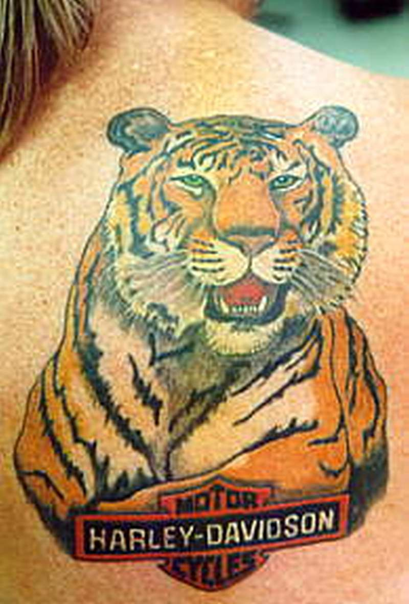 52 awesome harley tattoos for Free harley davidson tattoo designs