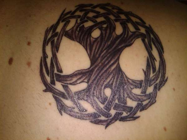 Brown Tree Of Life Circle Tattoo