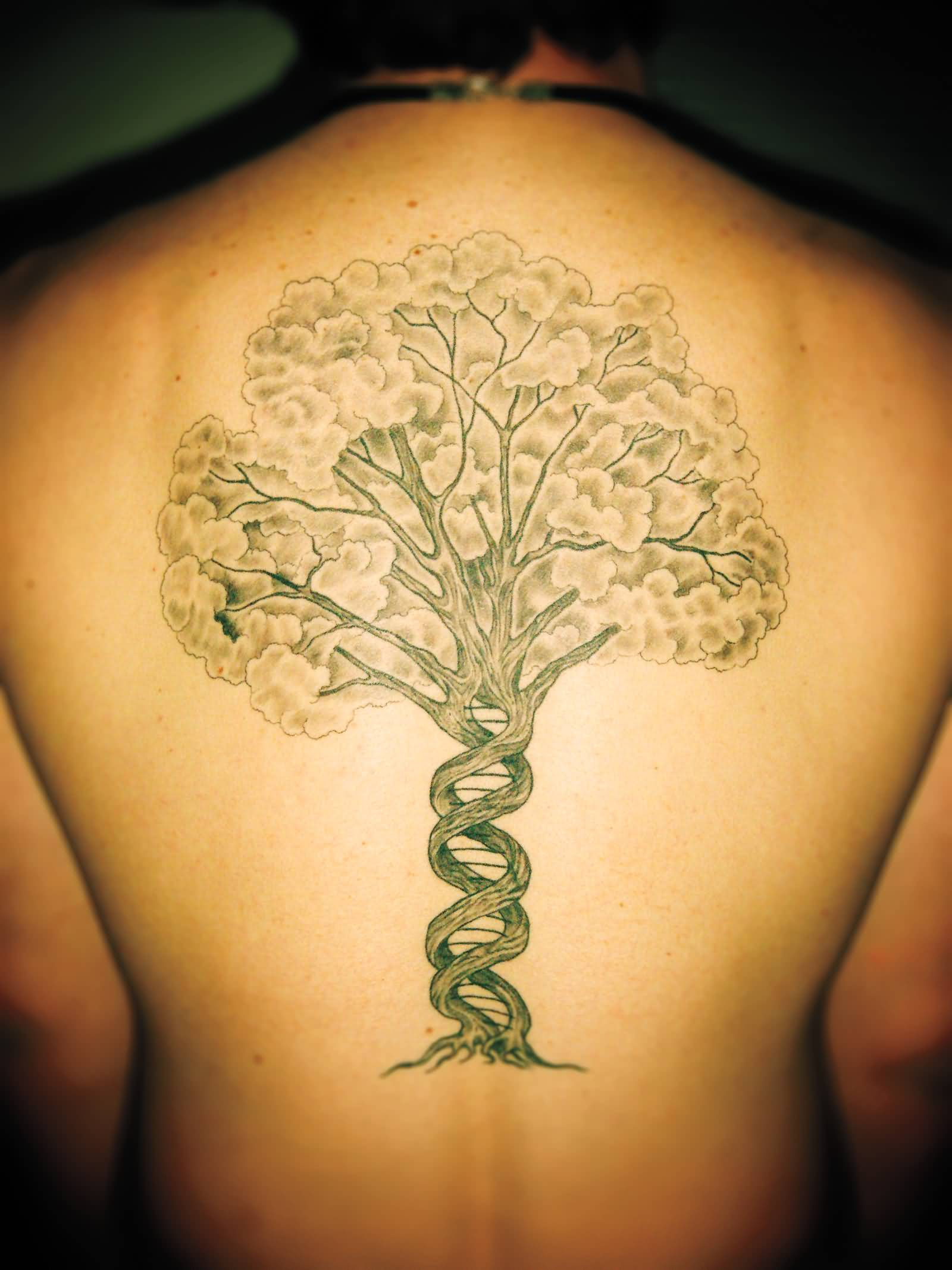 15+ Tree Of Life Tattoos On Back