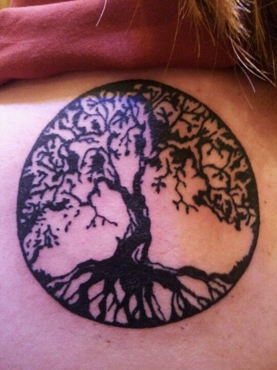 Small Tree Of Life Circle Tattoo For Girls