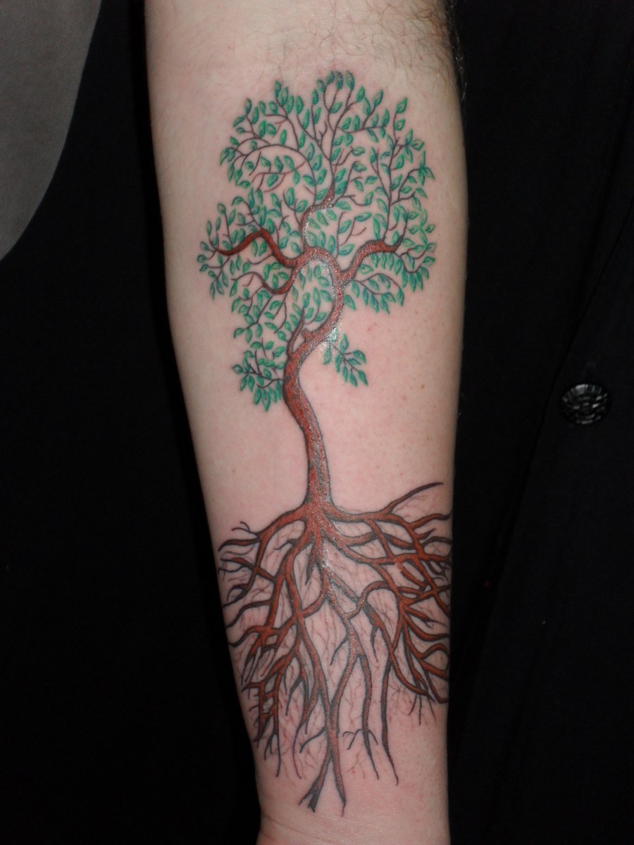 Perfect Tree Of Life Tattoo On Forearm