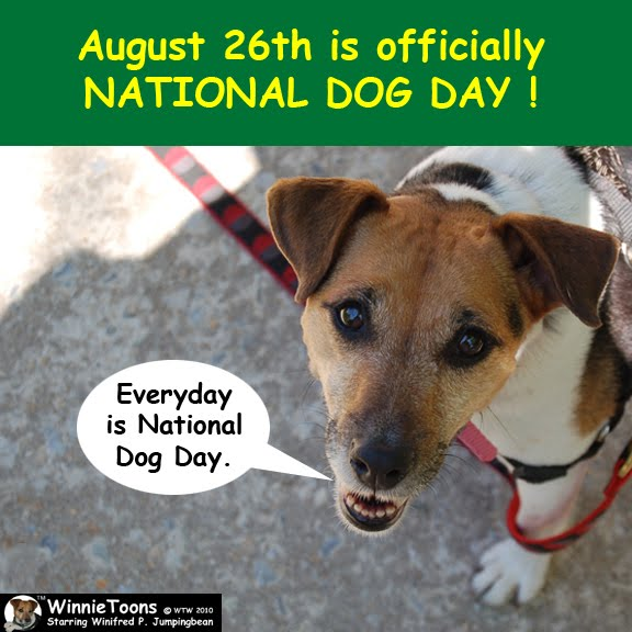 National Dog Biscuit Day