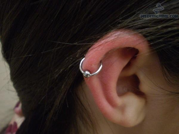 Silver Bead Ring Hoop Piercing