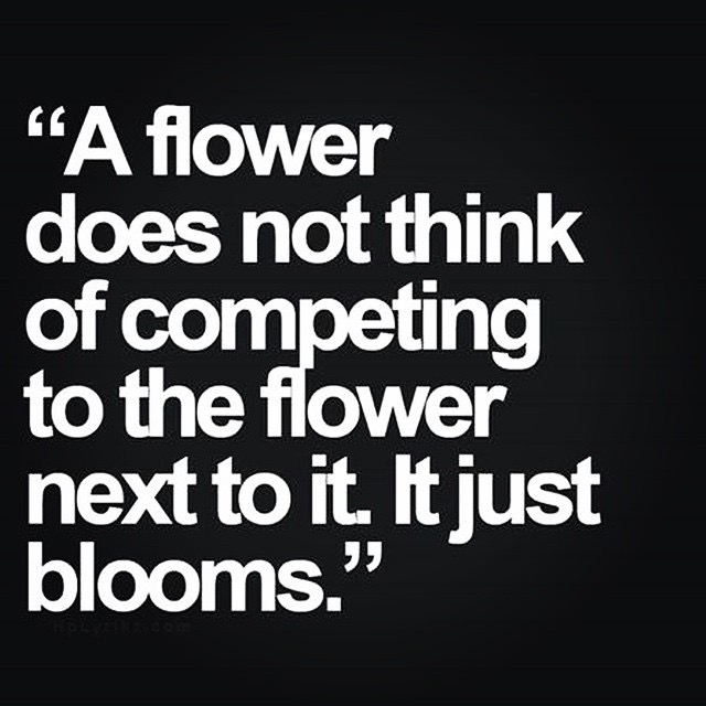 A flower does not think of competing to the flower next to it. It just blooms. - Zen Shin