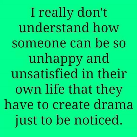 I really don't understand how someone can be so unhappy and unsatisfied in their own life that they have to create drama just to be noticed.