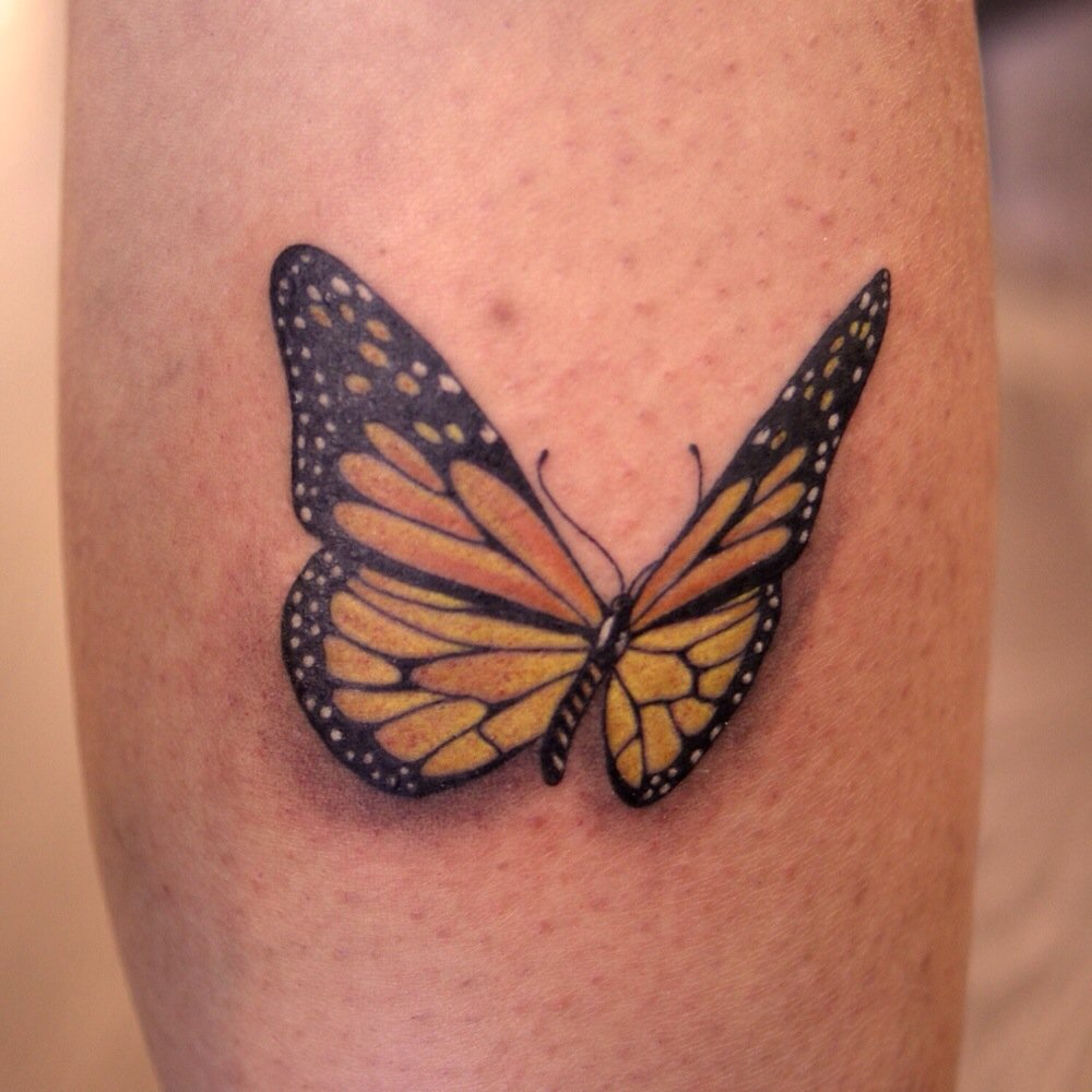 Monarch Butterfly On Flower Tattoo 5+ Monarch Butterfly T...