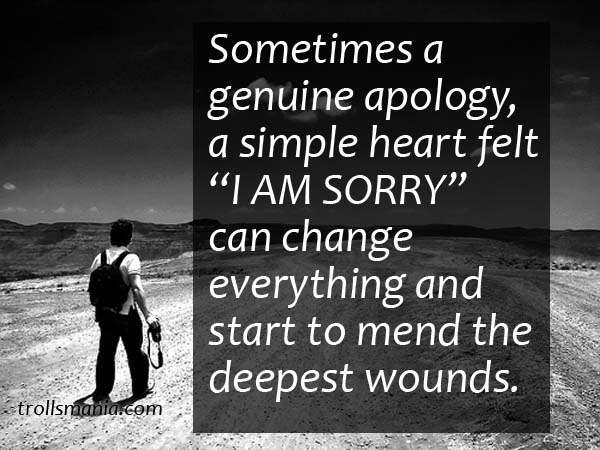 Sometimes A Genuine Apology A Simple Heart Felt Im Sorry Can