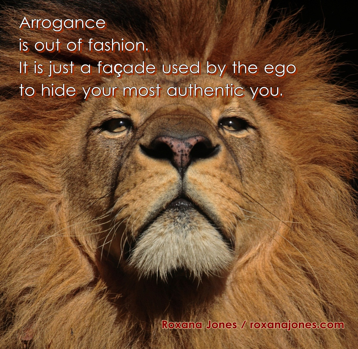 62 Top Arrogance Quotes And Sayings
