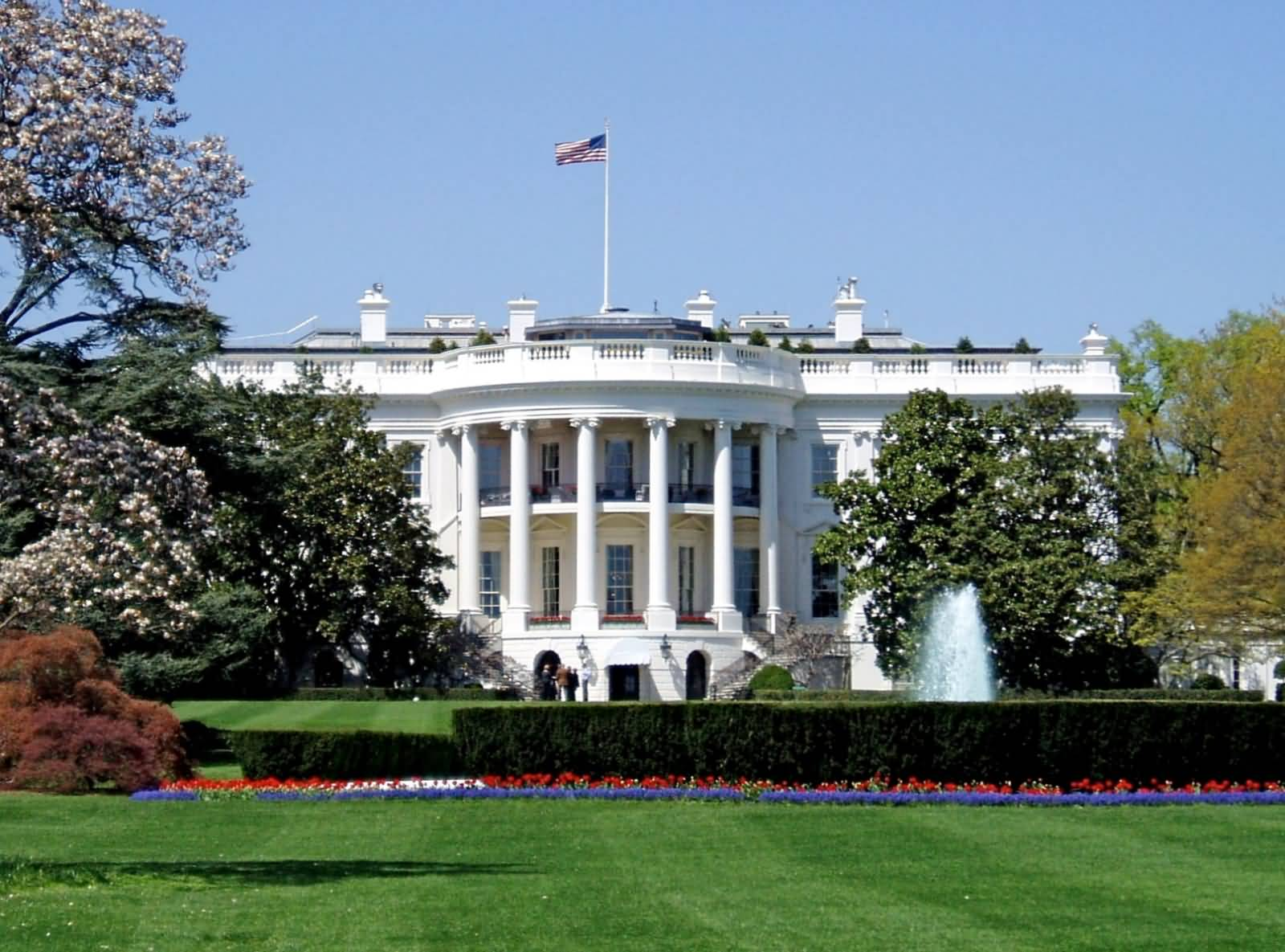 Back view of the white house for The white housse