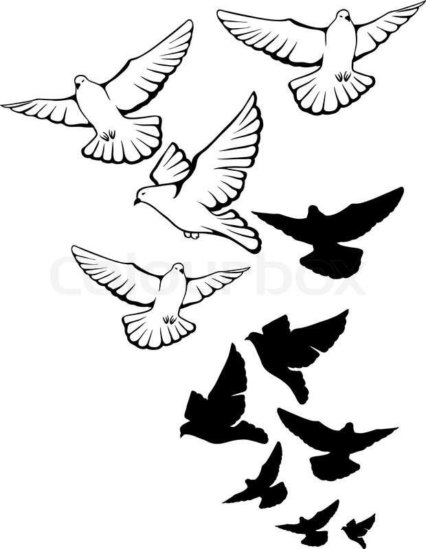 18+ Latest Dove Tattoo Designs
