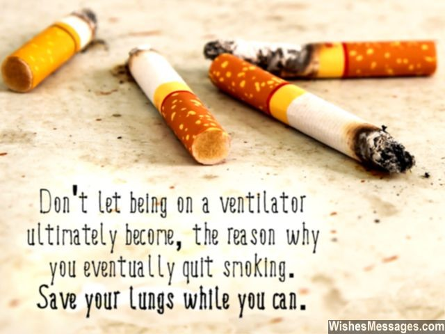 60 Best Smoking Quotes & Sayings