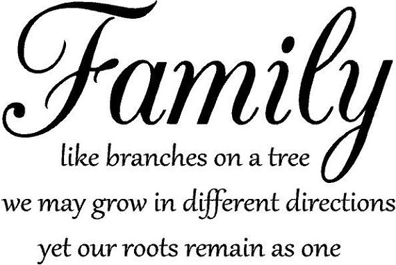 Quotes On Family Gorgeous 60 Top Family Quotes And Sayings