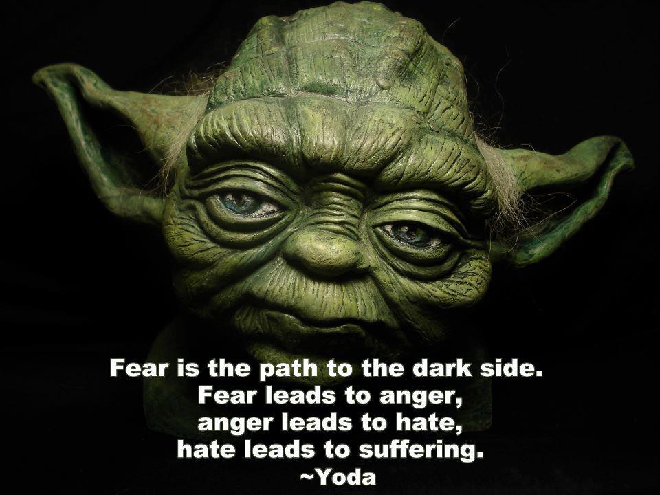 Fear is the path to the dark side. Fear leads to anger. Anger leads to hate. Hate leads to suffering .
