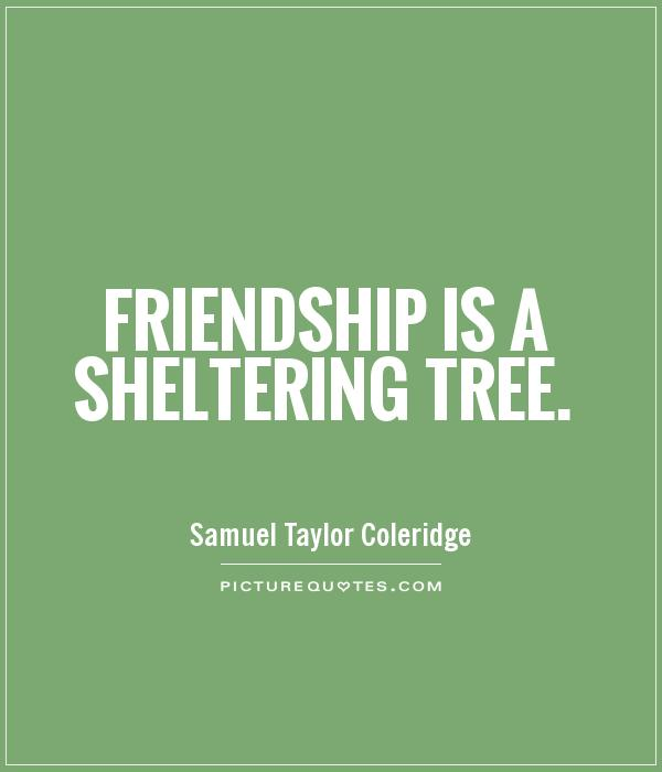 a true friend is like a sheltering tree Friendship is a sheltering tree your friend will be reminded of on best friend gifts (gifts for your good friends are like stars true friends.