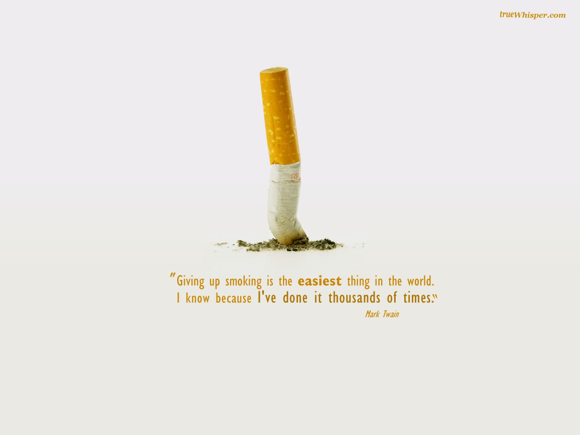 Anti Smoking Quotes Interesting 60 Best Smoking Quotes & Sayings